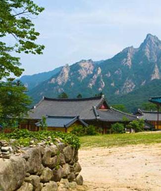 27 Day South Korea And Japan Tour