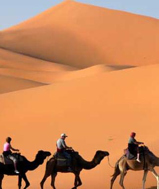 14 Day Morocco Tour